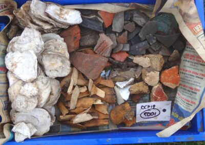 Oyster shells, painted plaster, mosaic and pottery finds
