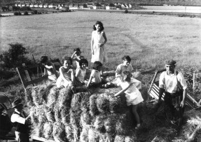 Hay Cart at Longlodge Farm