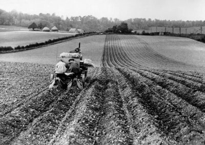 Mechanised potato planter near Twitton