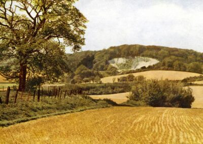 Polhill Chalk pit, to the West of Otford
