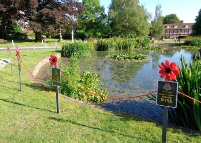 Ring of Remembrance - Otford remembers her dead